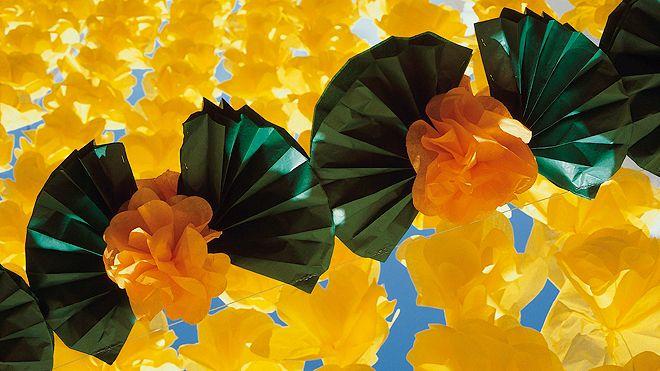 Festas das Flores Place: Campo Maior