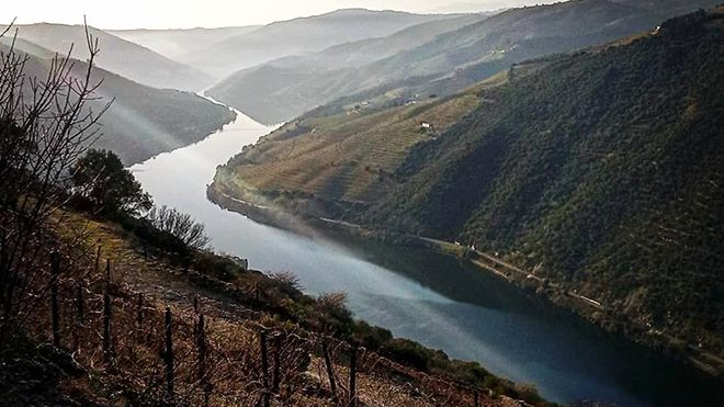 Douro With Soul Foto: Douro With Soul