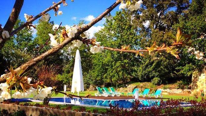 Quinta do Pomar Maior Luogo: Arouca Photo: Quinta do Pomar Maior