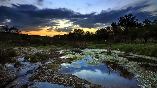 Alqueva Place: Herdade Contienda Photo: Dark sky Alqueva, Miguel Claro