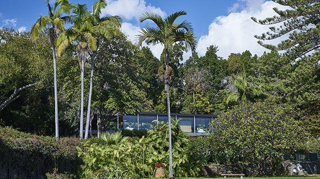 Quinta da Casa Branca - Gardens Place: Funchal