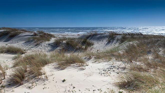 Praia de São Jacinto Local: Aveiro Foto: Shutterstock_AlexMorozov