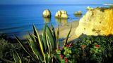 Algarve Место: Algarve
