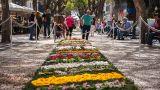 Festa da Flor Ort: Funchal Foto: AP Madeira