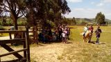 Herdade da Hera Ort: Manique do Intendente / Azambuja Foto: Herdade da Hera