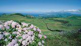 Monte da Achada - Ilha Terceira Local: Ilha Terceira - Açores Foto: João Paulo