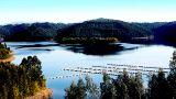Montebelo Aguieira Lake Resort & Spa Place: Mortágua Photo: Montebelo Aguieira Lake Resort & Spa
