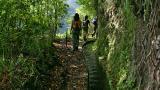 Levada Lieu: Madeira Photo: Turismo da Madeira