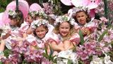 Festa da Flor Place: Funchal Photo: Turismo da Madeira
