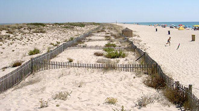 Praia da Terra Estreita 場所: Tavira 写真: ABAE