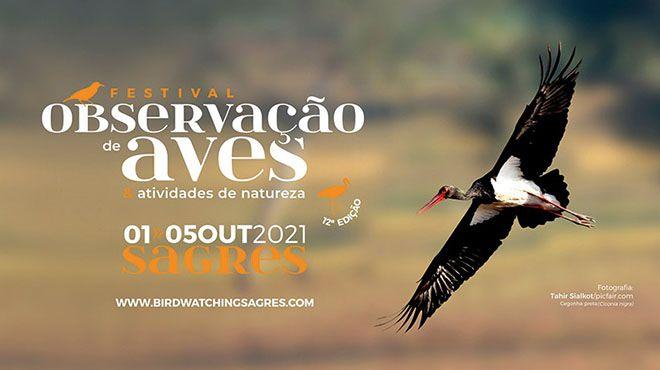 Festival Observação Aves Sagres 2021