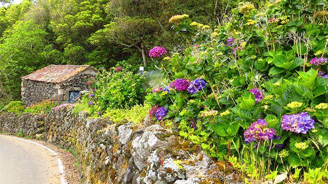 Delegação de Turismo - Terceira Место: Açores Фотография: Floreesha - Turismo dos Açores