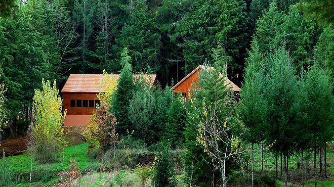 Parque Biológico de Vinhais Local: Vinhais Foto: Parque Biológico de Vinhais