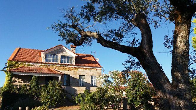 Quinta da Florência Ort: Seixo da Beira / Oliveira do Hospital Foto: Quinta da Florência