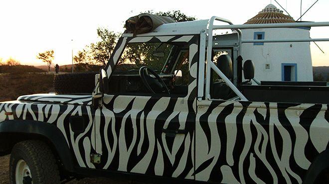 Arbez Zebra Luogo: Cascais Photo: Arbez Zebra