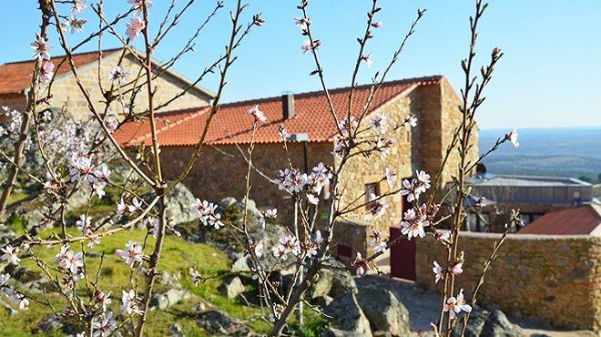 Casa da Amendoeira Local: Castelo  Rodrigo Foto: Casa da Amendoeira