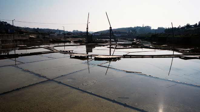 Salinas da Fonte da Bica Lugar Rio Maior Foto: ICNB