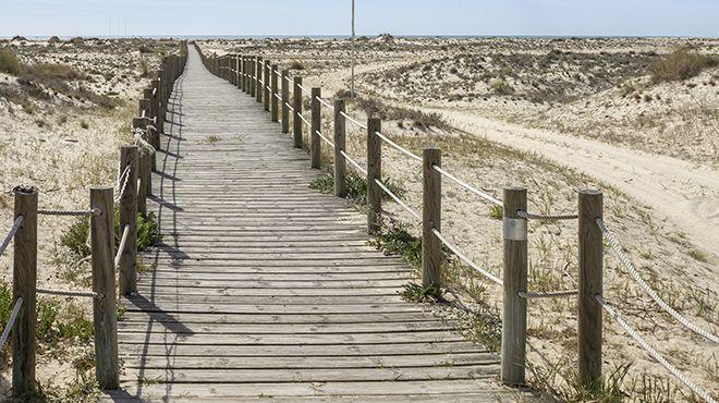 Praia da Ilha da Armona Ort: Ilha da Armona - Olhão Foto: Shutterstock_AG_Carlos Neto