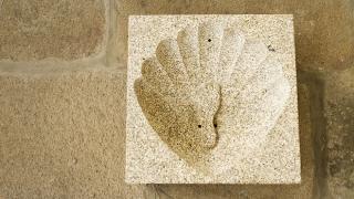 Vieira esculpida numa pedra Place: Barcelos