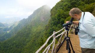 Birdwatching Ort: Floresta Laurisilva Foto: Ventura