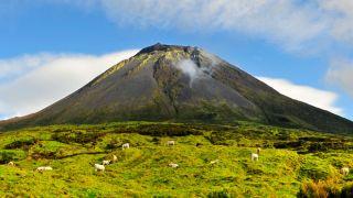 O cume do Pico visto do seu sopé Plaats: Ilha Do Pico nos Açores Foto: Maurício de Abreu