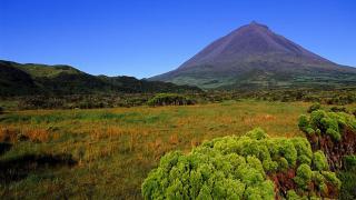 Pico Plaats: Pico Foto: Turismo dos Açores