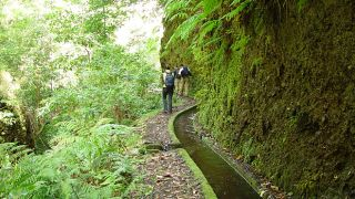 Levada Luogo: Lombo do Urzal Photo: Turismo da Madeira
