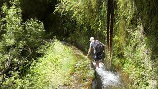 Levada Local: Madeira Foto: Turismo da Madeira