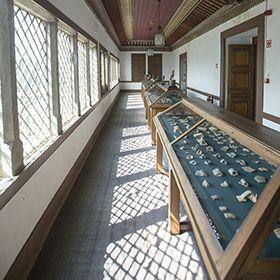 Museu Arqueológico Martins SarmentoPlaats: GuimarãesFoto: CM Guimarães