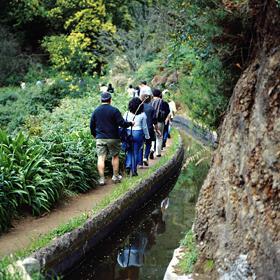 Levada場所: Madeira写真: Turismo da Madeira