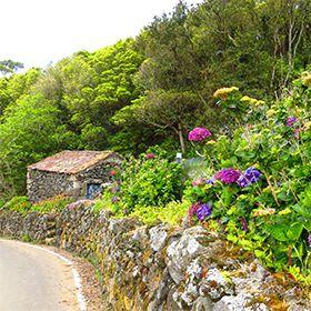 Delegação de Turismo - TerceiraLocal: AçoresFoto: Floreesha - Turismo dos Açores