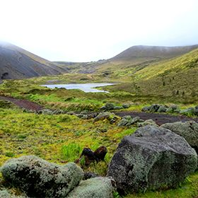 Delegação de Turismo de São MiguelPhoto: Floreesha - Turismo dos Açores