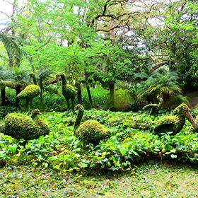 Parque Terra Nostra写真: Floreesha - Turismo dos Açores