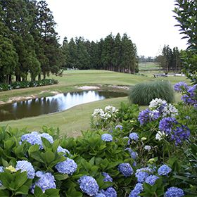 Clube de Golfe da Ilha TerceiraFoto: Clube de Golfe da Ilha Terceira