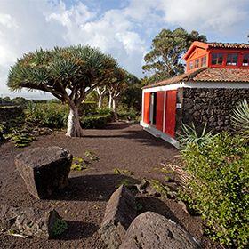 Museu do Vinho - PicoPlaats: PicoFoto: Carlos Duarte -Turismo dos Açores
