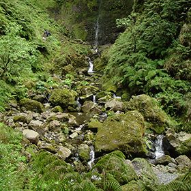 Parque Natural da Madeira