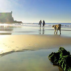 Praia de CarcavelosLocal: CarcavelosFoto: Turismo de Portugal / RR