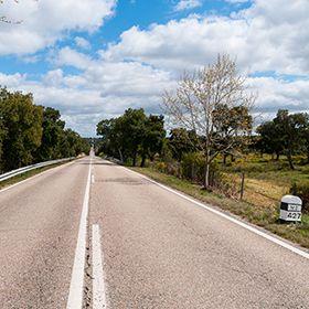 Estrada NacionalFoto: Foge comigo! - Fernando Romão