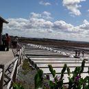 Núcleo Museológico do Sal
