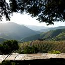 Quinta do Seixo Место: Douro Фотография: Quinta do Seixo - Sandeman