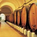 Pipes of wine Photo: Turismo Centro de Portugal