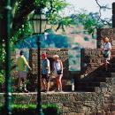 Castelo de Silves Ort: Silves Foto: Turismo do Algarve