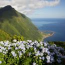 Fajã da Caldeira de Santo Cristo Local: Ilha de São Jorge nos Açores Foto: Rui Vieira