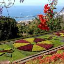 Jardim Botânico 地方: Funchal 照片: Turismo da Madeira