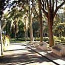 Jardim-Museu Agrícola Tropical