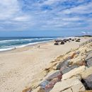 Praia da Vagueira