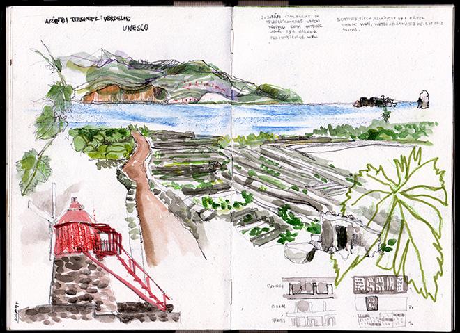 Vinhas da Ilha do Pico