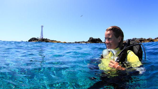 Diving in Azores_ Formigas Islets ©Nuno Sá and Turismo dos Açores